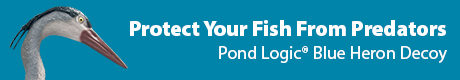 Protect Your Prized Fish From Predators - Pond Logic(r) Blue Heron Decoy