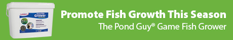 The Pond Guy(r) Promote Fish Growth This Season - The Pond Guy(r) Game Fish Grower