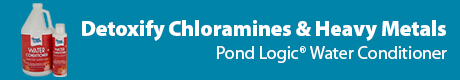 Detoxify Cholramines & Heavy Metals - Pond Logic (r) Water Conditioner