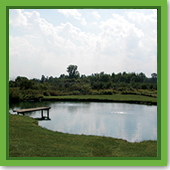 Q: Why should I aerate my pond?