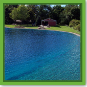 Q: Can I still swim in my pond if I use Pond Dye?