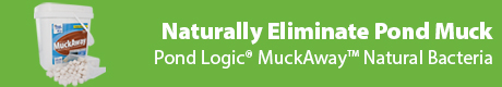 Naturally Eliminate Pond Muck - Pond Logic® MuckAway™
