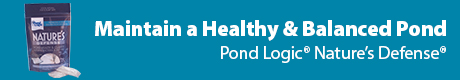 Maintain a Healthy Balanced Pond - Pond Logic (r) Nature's Defense (r)