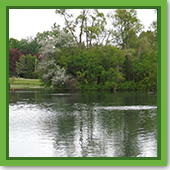 Q: I'm buying property with a half-acre pond. What do I need to know?