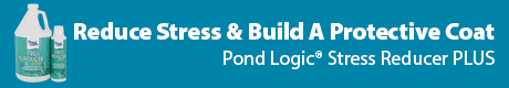 Reduce Stress & Build A Protective Coat- Pond Logic(r) Stress Reducer PLUS