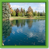 Q: My water quality is good now, but what do I need to do over the winter to keep it that way?