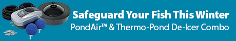 Safeguard Your Fish This Winter - PondAir (t) 2 & Thermo-Pond De-Icer Combo