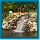 Top Blog Posts of 2014 - Water Garden
