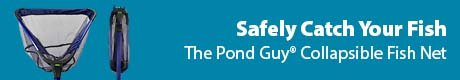 Safely Catch Your Fish - The Pond Guy® Collapsible Fish Net