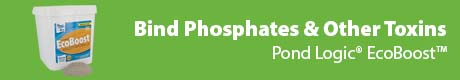 Bind Phosphates & Other Toxins - Pond Logic® EcoBoost™