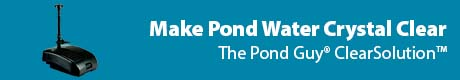 Make Pond Water Crystal Clear - The Pond Guy® ClearSolution™
