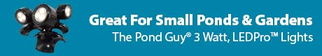 Great For Small Ponds & Gardens - The Pond Guy® 3 Watt, LEDPro™ Lights