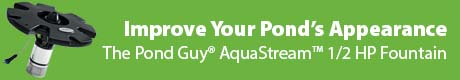 Improve Your Pond's Appearance - The Pond Guy® AquaStream™ 1/2 HP Fountain