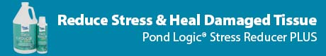 Reduce Stress & Heal Damages Tissue - Pond Logic® Stress Reducer PLUS