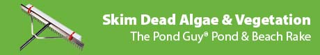 Skim Dead Algae & Vegetation - The Pond Guy® Pond & Beach Rake