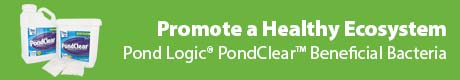 Promote A Healthy Ecosystem - Pond Logic® PondClear™ Natural Bacteria