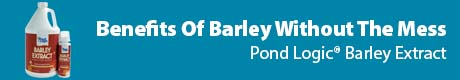Benefits Of Barley Without The Mess - Pond Logic® Barley Extract