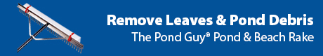 Remove Leaves and Pond Debris - The Pond Guy(r) Pond and Beach Rake