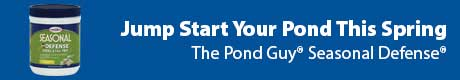 Jump Start Your Pond This Spring - The Pond Guy® Seasonal Defense®