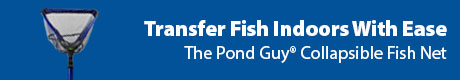 Transfer Fish Indoors With Ease - The Pond Guy® Collapsible Fish Net