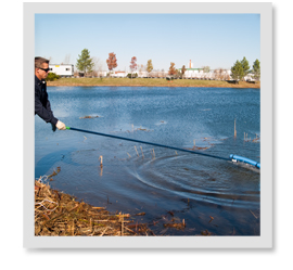 There are rakes, razors, cutters…skimmers…is there a difference and which works best to clean the pond?