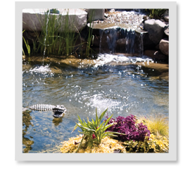 I have a waterfall in my pond, is that enough aeration?