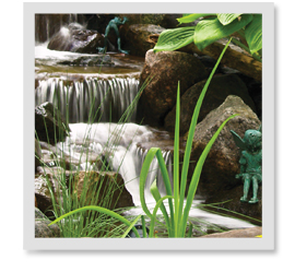 How Can I Own & Maintain A Water Feature With My Busy Schedule?