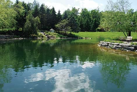 Pond water treatment natural pond management the pond guy for Koi pond treatment