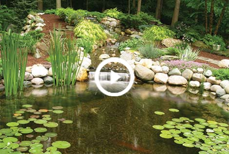 Pond skimmers waterfall filter fish pond filtration for Koi pond liner calculator
