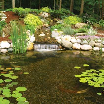 Water garden supplies fish pond supplies the pond guy for Garden pond materials