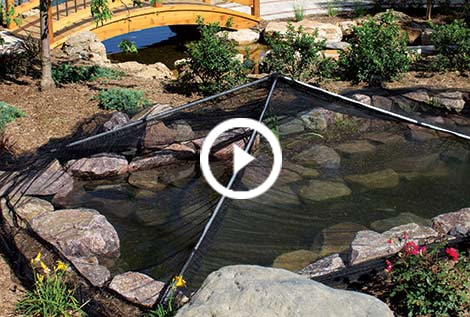 Pond cover netting clear pond netting the pond guy for Koi pool cover