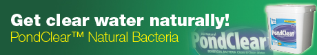 Get clear water naturally with PondClear™ Natural Bacteria!