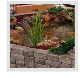 When should I remove the fountain from my pond?