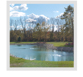If I have a spring running into my pond do I still need aeration?