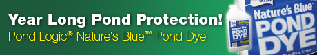 Season Long Pond Care