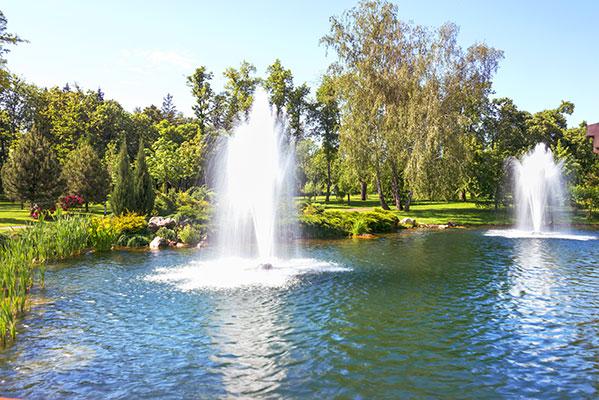 Pond, Lake, & Water Garden Supplies, Pond Algae Control