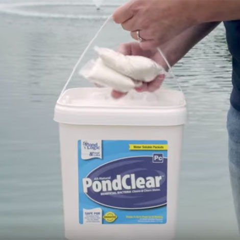 I still have PondClear natural bacteria. Am I better off throwing the rest in, or will it still be good for next season?
