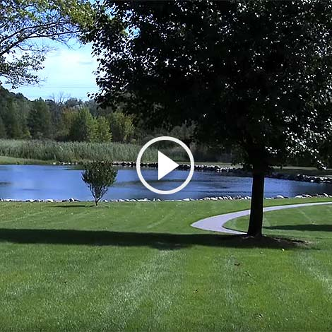 Pond Care 101: The new standard in pond management