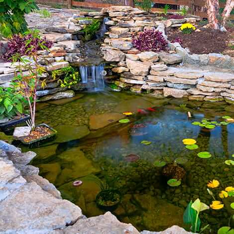 Types of Ponds & Water Features | The Pond Guy
