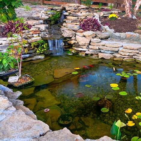 Filtration for ponds water garden filtration the pond guy for Koi pond rocks