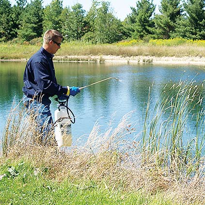 Algae & Aquatic Weed Control