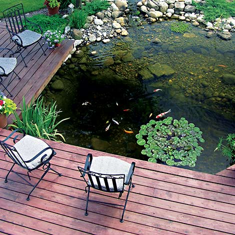 Why Build a Water Feature? - Why Build A Water Feature?, Building A Pond Or Feature: The Pond Guy