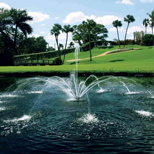 Arum Nozzle for Aqua Control Evolution Series 1/2 HP Fountain