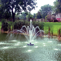 Aqua Control 1/2 HP Decorative Fountain Fleur De Lis