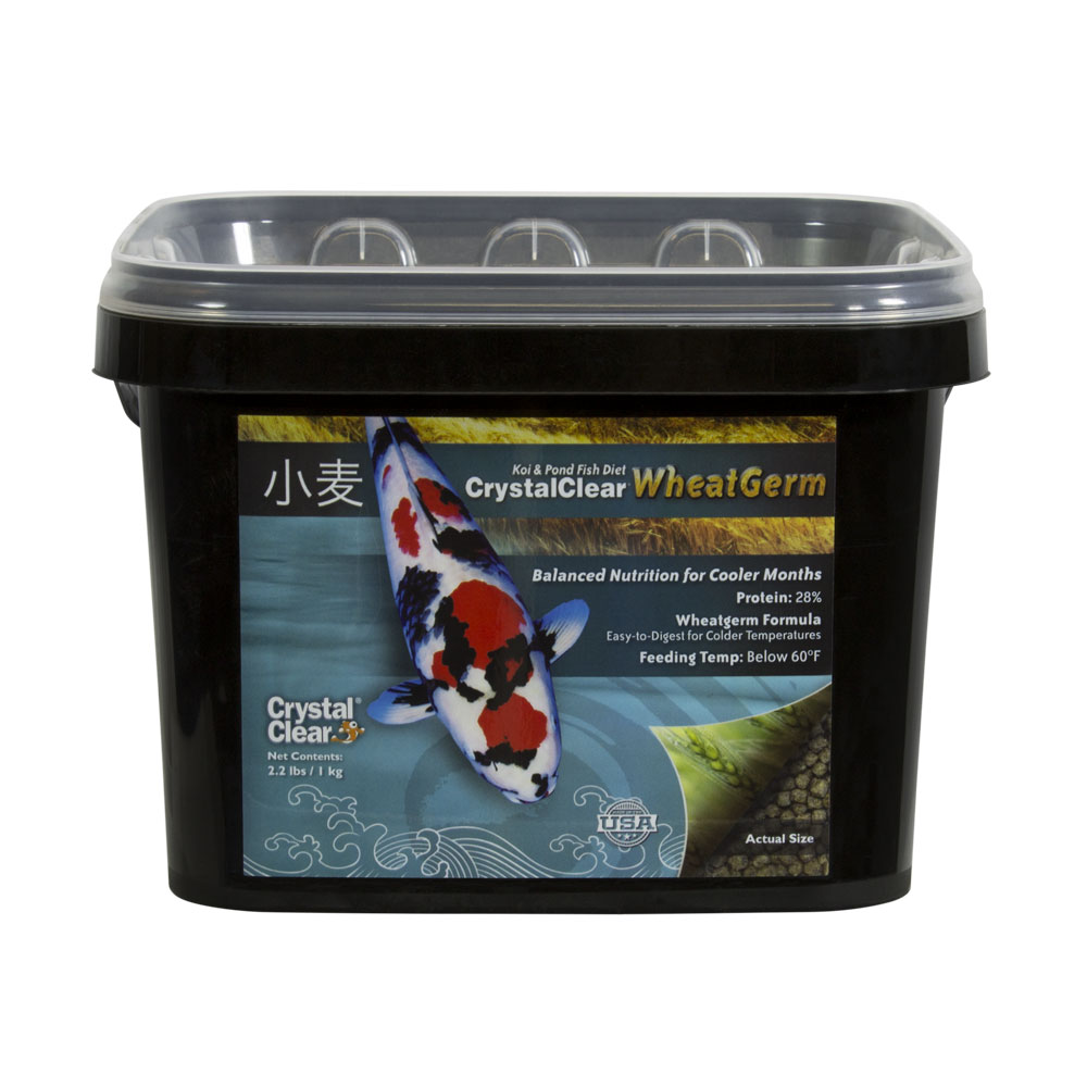 Pond fish food for sale koi wheatgerm pellets for Koi fish food for sale