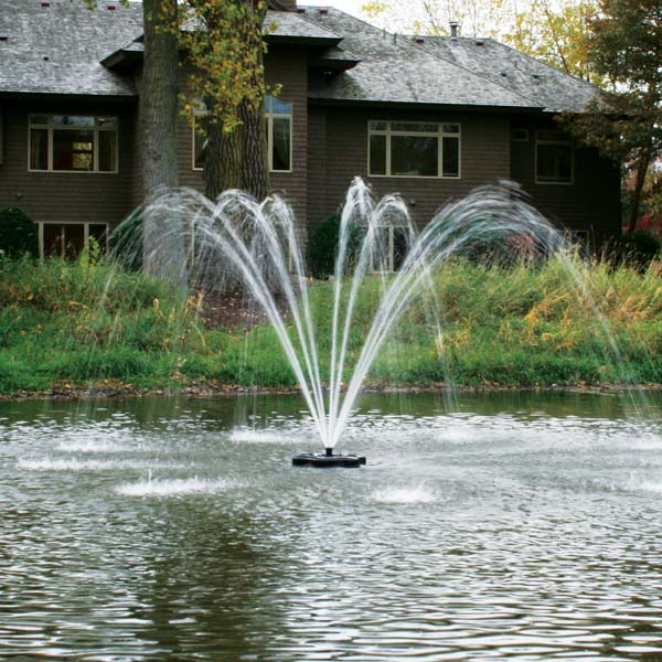 Kasco 1 HP 4400JF Fountain, 5 Spray Patterns, 115V