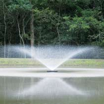 Kasco 2 HP 8400JF Fountain, 6 Spray Patterns