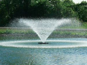 Kasco 8400VFX 2 HP Floating Fountain
