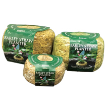 Summit® Barley Straw Planters