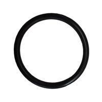 The Pond Guy<sup>&reg;</sup> AllClear<sup>&trade;</sup> G1 Quartz Sleeve O-Ring